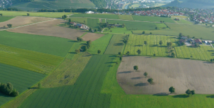 Gewerbepark Waldzimmern - mitten in Hohenlohe